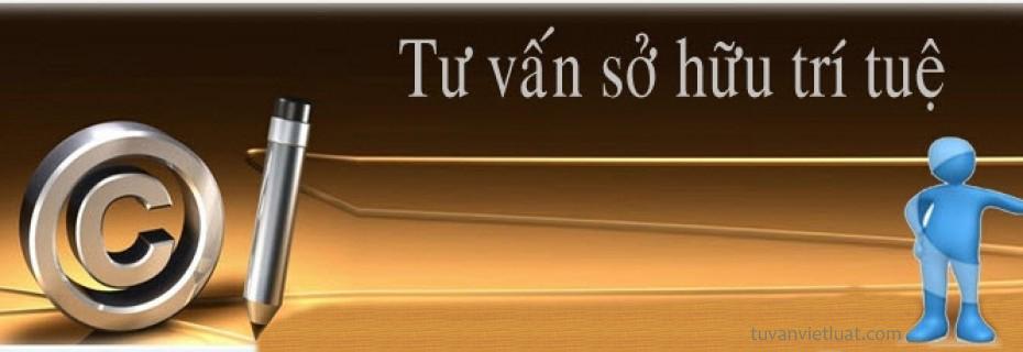 so-huu-tri-tue_0